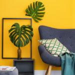 mur jaune safran