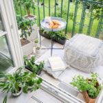 petit balcon végétalisé